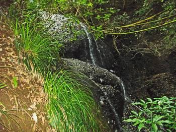 t_霧降りの滝10.jpg